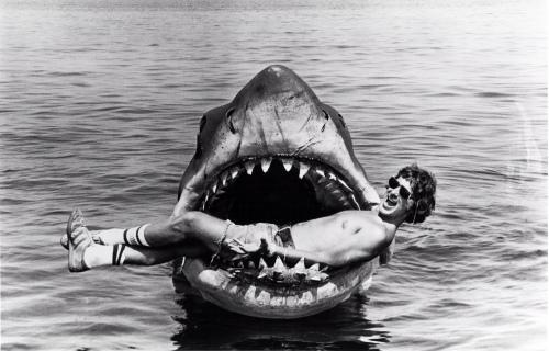 Steven Spielberg Jaws 1975